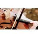 Corde per violino