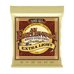 ERNIE BALL 2006 Earthwood Extra Light
